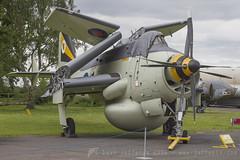 XL502 Gannet Royal Navy (JaffaPix +3 million views-thank you.) Tags: yorkshireairmuseum elvington aeroplane aircraft airplane museum museam preserved preservation military davejefferys jaffapix jaffapixcom egyk xl502 gannet royalnavy
