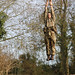 Royal Marines Commando Tests
