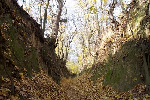 Wąwóz Królowej Jadwigi w Sandomierzu jesienią # 9