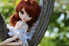 Honey don't mistake my affection~ (Local Ghost) Tags: pullip stica