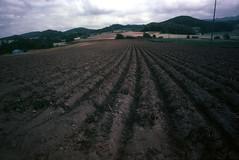 Earth and soil (threepinner) Tags: mamiya japan 50mm hokkaido farm harvest 北海道 日本 velvia100 press f63 hokkaidou selfdeveloped 栗沢 iwamizawa northernjapan sekor sakurayama 桜山 岩見沢 super23 北日本
