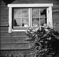 Wooden window (A.Sundell) Tags: street old 6x6 tlr film vintage square blackwhite shadows superb kodak sweden bokeh tmax voigtlander streetphotography swedish d76 german uppsala epson medium format sverige analogue v600 voigtländer tmax100 twinlensreflex westgermany skopar gammal fixer uppland gatufoto uppsalalän voiglaender epsonv600 tmaxfix voigtländersuperb