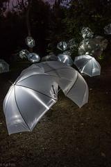 Glowing umbrellas II (kaifr) Tags: night lights evening walk events glowing umbrellas cultural torchlight akerselva unbrellas 2015 elvelangs fakkellys mesn