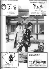 Aki no Kamogawa Odori 1986 018 (cdowney086) Tags: 先斗町 pontocho 鴨川をどり onoe 尾上流 maiko 舞妓 1980s ichiyoshi ichichō akinokamogawaodori 秋の鴨川をどり