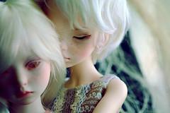 don't leave me here (oso_polar) Tags: toy doll bjd dim laia dollmore dimdoll narsha zihu