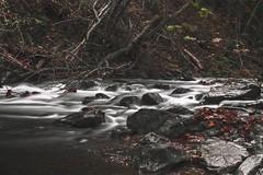 Fall Flow (Joey Wharton) Tags: longexposure autumn fall nature water forest river outside outdoors virginia va