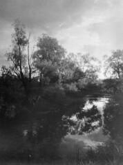 Vistula valley wonderland (Other dreams) Tags: bw monochrome silver landscape poland vistula oxbow pomerania baryta