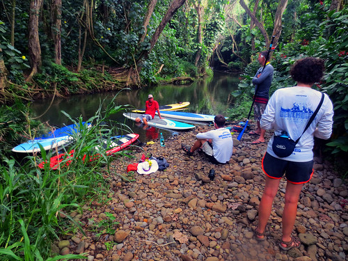 2015 Kauai Paddle Adventure  (31)