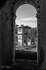 The Colosseum 12 (thanks for visiting my page) Tags: bw italy rome blackwhite ancient colosseum empire coliseum romans flavianamphitheatre canon6d tamron2470mm bmeijers bertmeijers