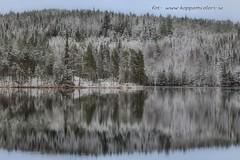 20151121087243 (koppomcolors) Tags: sweden sverige scandinavia värmland varmland koppomcolors håltebyn