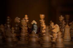 Black horse (Jarek Jahl) Tags: horse game bokeh chess depthoffield blackhorse nikkor50mmf18g f18g