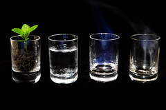 4 elements #2 (JocaDF) Tags: blue brown white abstract black green water glass fire shot earth air shotglass glassware tumbler