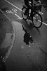 Cycling after rain. (Panagiotis Vyrinis) Tags: 2016 blackandwhite bnw cafe bw candid city cityscape contact cobbelstone day expression gatufoto gothenburg göteborg monoart monochrome noir december outdoor panagiotis vyrinis people rawstreet road sidewalk staring street streetphotography sweden sverige fujifilm fuji xpro2 fujinon xf23mmf2rwr bicycle reflection man riding ride rain water arrow