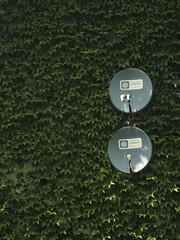human vs nature (marcinmalicki) Tags: naturevshuman humanvsnature graffunk urbanphotgraphy urbanphoto malik malicki tv satelite