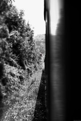 Stop! (Mario Ottaviani Photography) Tags: sony sonyalpha italy italia paesaggio landscape travel adventure nature scenic exploration view vista breathtaking tranquil tranquility serene serenity calm carovilli molise train treno stop fermata semaforo rosso red selectivecolor blackwhite blackandwhite monocromatico monocromo monochrome voyage trip gita