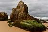 Elephantine (jack eastlake) Tags: mimosa rocks national park far south coast nsw tathra bega valley middle beach gillards