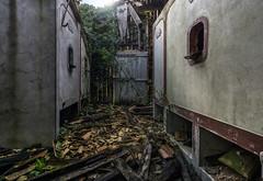 Carafage. (LoquioR) Tags: chai wine house cuve beton abandoned abandonné decay exploration urbex urbaine