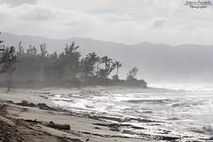 Lost Survivor Beach (Federico Prevedello Photography) Tags: hawaii honolulu usa roadtrip canon canon1dx beach sunset sun