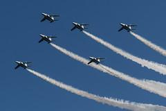 DSC_9399.jpg (kenichi0213) Tags: jasdf 航空自衛隊 自衛隊 航空祭 入間 入間基地 入間航空祭 iruma japan saitama 埼玉 nikon nikkor ブルーインパルス blueimpulse airshow