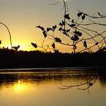 Sunset at the Lake thumbnail