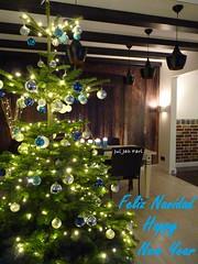 Weihnachten 2016/17 (Jui Jah Fari) Tags: weihnachten frohesfest feliznavidad merrychristmas joyeuxnoël buonnatale christmas tree weihnachtsbaum juijahfari germany bonadal bonnadal срећан божић божиќ среќенбожиќ gëzuarkrishtlindjet happynewyear geseëndekersfees عيدميلادمجيد веселаколеда 聖誕節快樂 圣诞节快乐 glædeligjul häidjõule hyvääjoulua selamatharinatal sretanbožić priecīgusziemassvētkus linksmųkalėdų selamatharikrismas miliedittajjeb wesołychświąt feliznatal crăciunfericit веселоерождество godjul срећанбожић veselévianoce veselbožič maligayangpasko สุขสันต์วันคริสต์มาส veselévánoce mutlunoeller зріздвом boldogkarácsonyt зкалядамі heiligabend happyday christkind autofocus