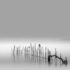 Together (savillejoe) Tags: nikon d5 longexposure lake japan bigstopper water bw calm landscape zen birds fishingsticks fishing net