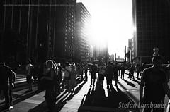 Av. Paulista (Stefan Lambauer) Tags: paulista avenida avpaulista street pb bw people sun sunset 2012 stefanlambauer pessoas buildings sãopaulo brasil brazil