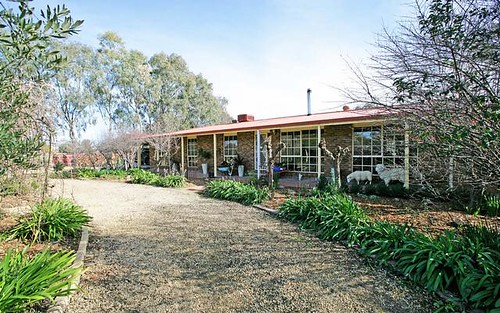3 Sycamore Road, Lake Albert NSW