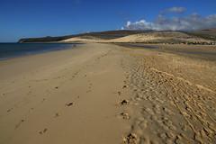 Sotavento beach (Bert#) Tags: canaryislands fuerteventura sotavento beach nature island ocean landscape travel blue sky outdoor