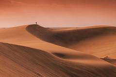 Maspalomas (darek_gruszka) Tags: gran canaria spain maspalomas dunes sand light holidays january winter