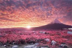 Rock (Jean-Michel Priaux) Tags: paysage nature flowers pink japan fuji sky cloud sunset sunshine mountain surreal unreal photoshop poetic poésie paint painting mattepainting mat terrific