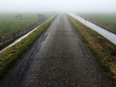 On my way to nomansland... (PaulHoo) Tags: mijdrecht utrecht nederland road vantage vanishing point polder landscape mist winter fog pavement emptiness silence lines holland 2017 iphone