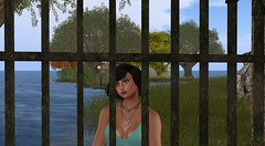 The other side of the fence (taysaroffo) Tags: secondlife fences othersideofthefence beauty dreams dreamy daydreams dreaming wishes wishing