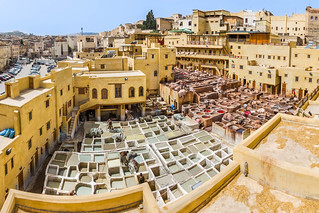 Tannery in the medina of Fez