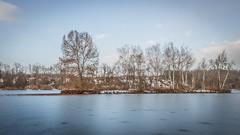 Etang de La Serre (Arandon/Lancin - 38) (chapuis_sophie) Tags: etangdelaserre lancin pays etangs tp9 isère isere arandon 2017 janvier dauphiné france hiver rhonealpes winter auvergnerhônealpes fr