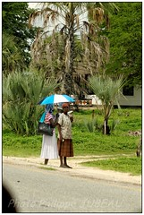 DSC08761PJ_resultat (http://phj.bookfoto.com/) Tags: okavango botswana afrique philippe jubeau