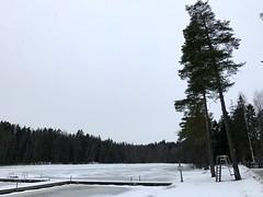 Stop Over Finland Vantaa Day trip Fazer experience & Kuusijärvi lake 33 (Travel Dave UK) Tags: stop over finland vantaa day trip fazer experience kuusijärvi lake