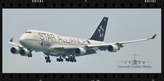 HS-TGW (EI-AMD Aviation Photography) Tags: hstgw eiamd vhhh hkg boeing 747 star alliance photos aviation airport avgeek hong kong thai airways international