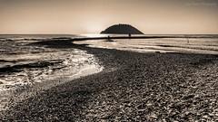 The Golden Stripe (Luca Enrico Photography) Tags: liguria albenga mare sea spiaggia beach landscape seascape isolagallinara golden filter filtri sigma1020f35 d7100