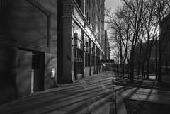 West Washington Street (patrickkuhl) Tags: madison madisonwi wisc wisco wisconsin street streetphotography blackwhite blackandwhite monochrome film filmcamera filmphotography filmisnotdead analog 35mm leica leicam6 m6 ricoh ricohgr ltm 28mm kodak kodakfilm 5222 doublex kodakd76 d76 selfdeveloped shadows people trees building filmphotographyproject fpp