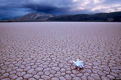 Storm gathering at Death Valley (Ozyman) Tags: california usa mountains hot history texture topf25 racetrack landscape death nationalpark topf50 scenery flat quality shell dry dreary stormy explore lakebed valley drought deathvalley waste cracks stark barren topf100 arid interestness topf200 thirsty torched conch monotonous sterile stormyclouds desiccated parched lifeless waterless usnationalparks dehydrated naturalsculpture aridity aridness aridly moistureless