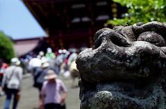 shrine dog -komainu- - by rahen z