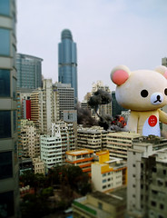 ... (pulpmojo) Tags: bear stuffedtoy composite photoshop hongkong  rilakkuma fursuit tiltshift    kigurumi  korilakkuma