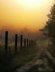 Fish Camp Road (nailbender) Tags: road sunset camp mist nature fog sunrise fence bravo 500v20f searchthebest quality topv1111 country top20landscape topf100 rual blountcountyalabama naturesfinest nailbender topvaa specnature fivestarsgallery flickrplatinum thegalleryoffinephotography jdmckinnon