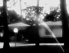 sprinkler (getthebubbles) Tags: summer blackandwhite bw june yard florida walk suburbia neighborhood sprinkler observe thursday stroll getthebubbles utatafeature utatathursdaywalk11 monthemesheat
