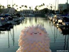 woolloo treeson arrived at the marina!! ^-^/ (woolloomooloo) Tags: california cute love andy beautiful smiling happy pier losangeles sweet woolloomooloo deck gift coolpix nikondigital wookie marinadelrey autographed milkjar crazylabel treeson bubiauyeung kindhearted treesonandren woollootreeson environmentalfriendly thankyouverymuchandy thankyousomuchbubi woollootreesonarrivedatthemarina