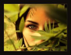 Nymph (DesideratiVe) Tags: portrait green girl eyes bravo portraiture mystic jaded theface blueribbonwinner supershot flickrsbest abigfave creativeshotinvited superbmasterpiece