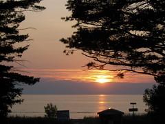 summer nights drifting away... (416style) Tags: trees sunset summer sun ontario canada tree beach pine sand shine collingwood wasaga away grease sookie nights ubiquitous drifting allenwood