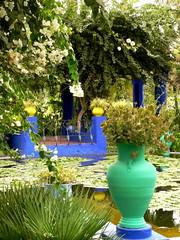 Sometimes Green (chrisflyer) Tags: africa door blue cactus plant green garden french jardin palace arabic explore pot morocco berber maroc moorish painter marrakech vase pottery majorelle medina marrakesh pane moor marruecos craving
