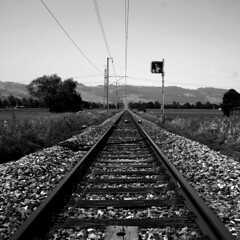 Vanishing (Markus Moning) Tags: railroad blackandwhite bw white black square point grey schweiz switzerland track crossing suisse swiss perspective grau eisenbahn rail monotone sbb level valley crop rails sw format rheintal schwarzweiss vanishing rhine bahn canoneos350d weiss flint riet schwarz gravel perspektive railroads moning gleis railtrack oberriet kies altsttten schotter bahnbergang mittelformat fluchtpunkt bergang 123bw markusmoning